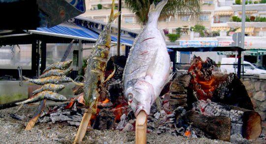 Fisch gegart am Holzoffen - offenes Feuer